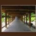 桃太郎伝説の桃太郎は吉備津神社の吉備津彦の尊らしい