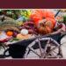 ハロウインは収穫祭、銀座の空中庭園に飾られた渡辺さくらさんの作品